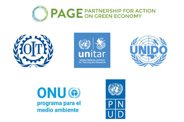 Taller de Validación del estudio sobre Transición Justa, Sostenible e Inclusiva en la Argentina pospandémica para PAGE (Naciones Unidas)